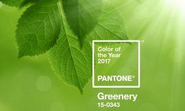 ¿Ya sabéis cual va a ser el PANTONE del año?